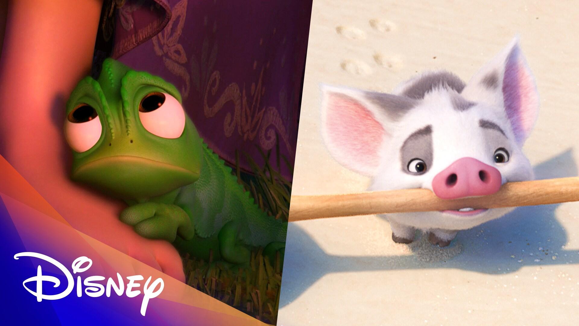 60 Seconds of Disney Animals | Disney