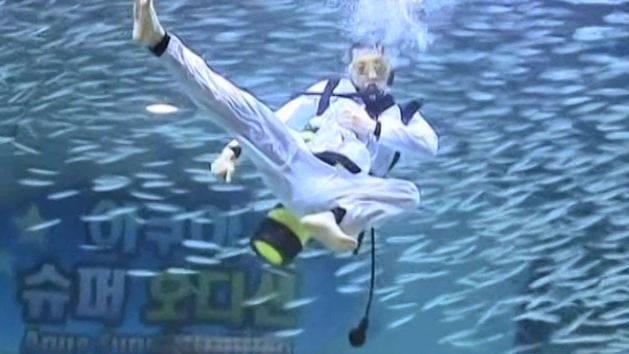 Divers Dance With Fish At Aquarium