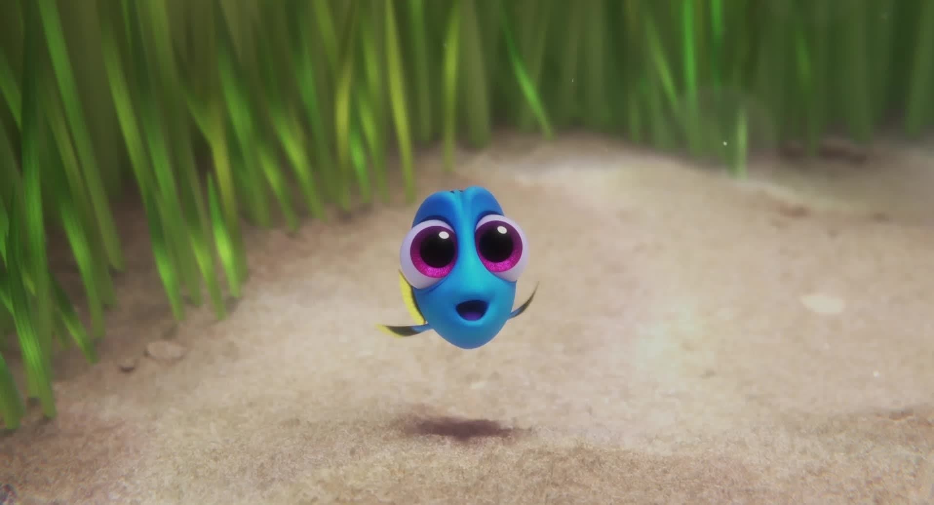 Finding Dory | Baby Dory
