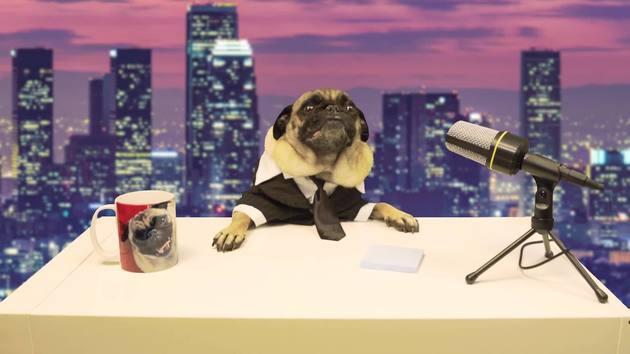 Mailman Boo Gizmo T Pug Show Disney Lol