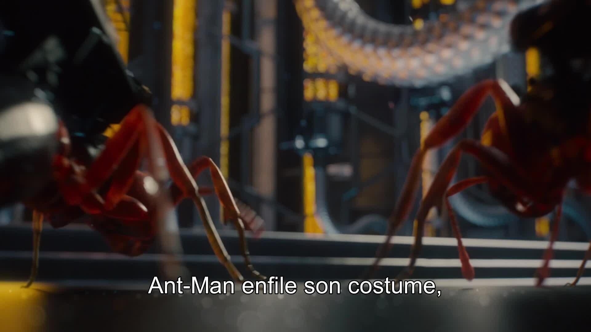 Ant-Man - Bonus - Une légion de fourmis (VOSTFR)