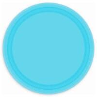 Light Blue Lunch Plates