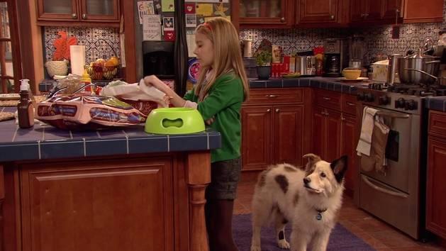 #Doggyblog - Extrait « Un chien qui parle ? »
