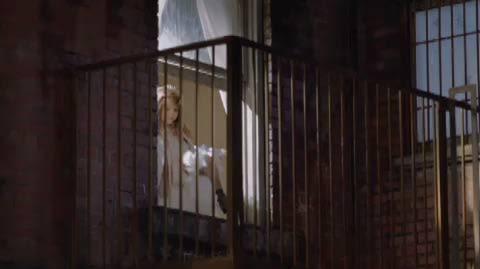 Quinn Meets Paws