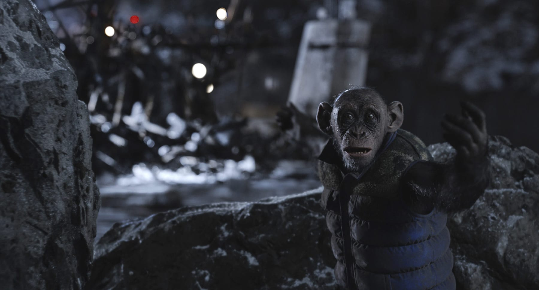 "Steve Zahn in ""War for the Planet of the Apes"""