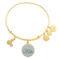 Image of Cinderella ''A Dream is a Wish . . .'' Bangle by Alex and Ani # 3
