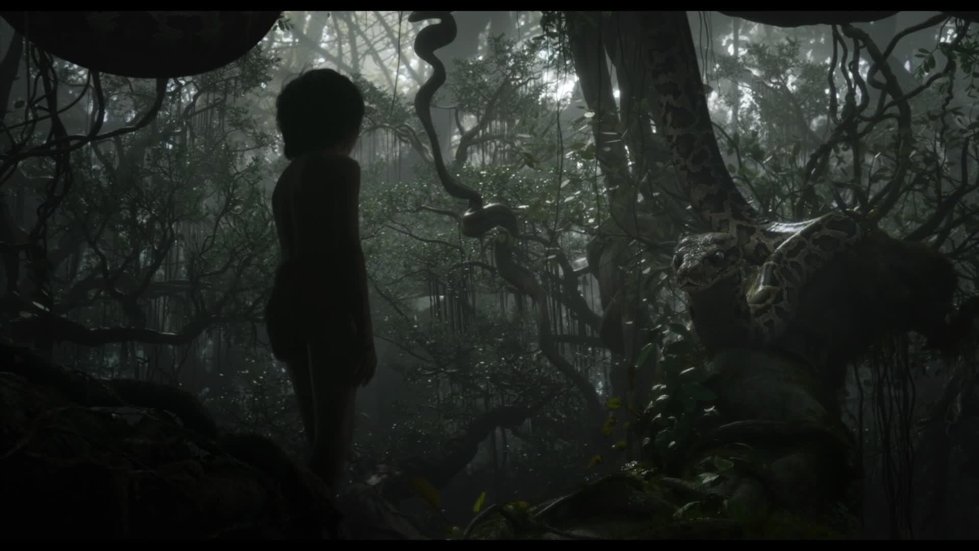 Le Livre De La Jungle - Kaa