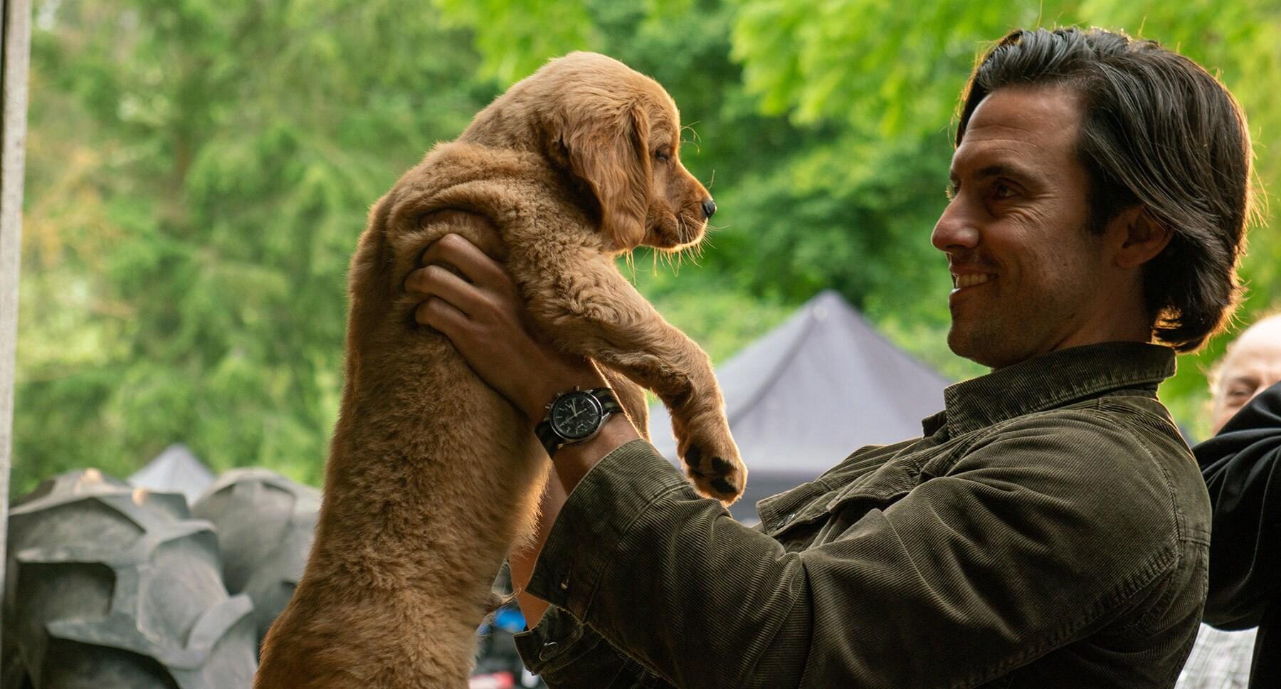 "Denny (Milo Ventimiglia) and puppy Enzo in the movie ""The Art of Racing in the Rain"""