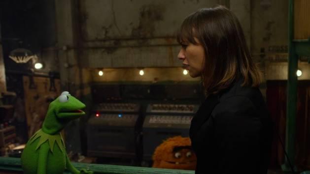 Die Muppets - Kermit braucht einen Promi