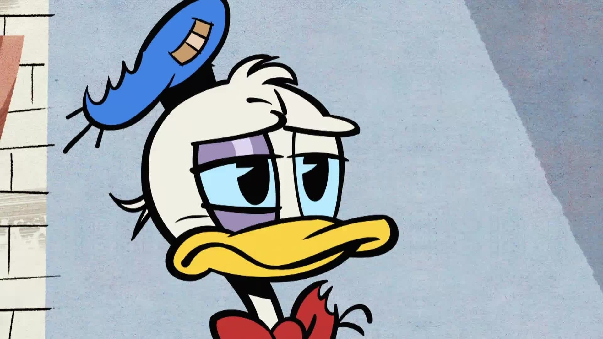 Mickey Mouse in Flipperbuileritis