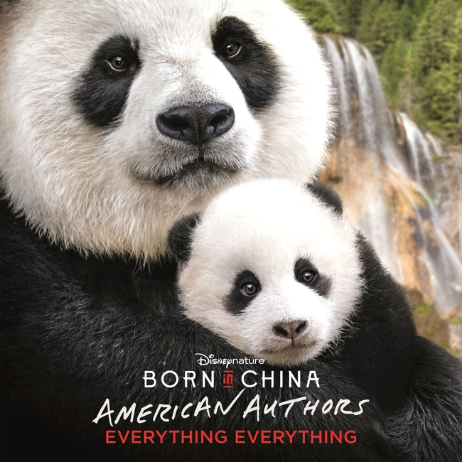 American Authors - Everything Everything (Born In China)