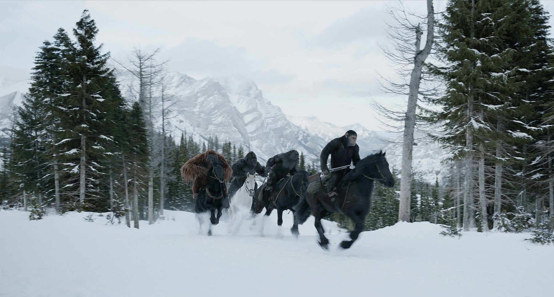 "Karin Konoval, Andy Serkis, Terry Notary, and Michael Adamthwaite in ""War for the Planet of the Apes"""
