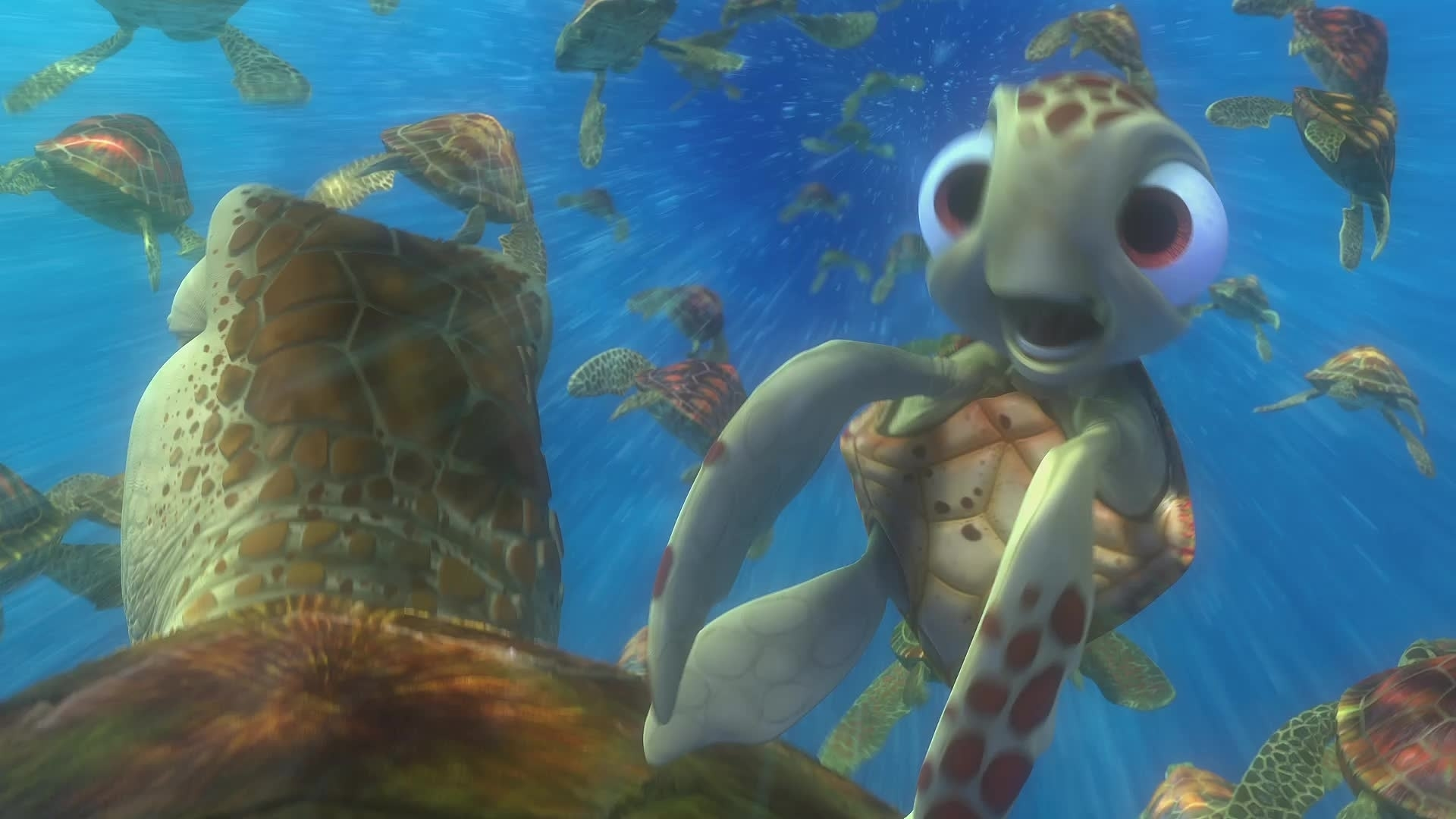 Le Monde De Nemo 3D - Extrait - La procédure de sortie