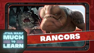 Rancors | Star Wars: Much to Learn