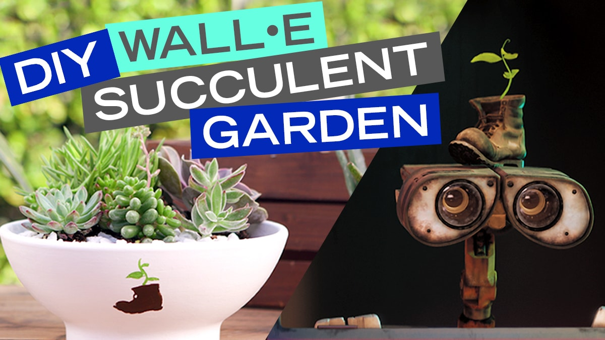 DIY WALL•E Succulent Garden | DIY by Disney Style