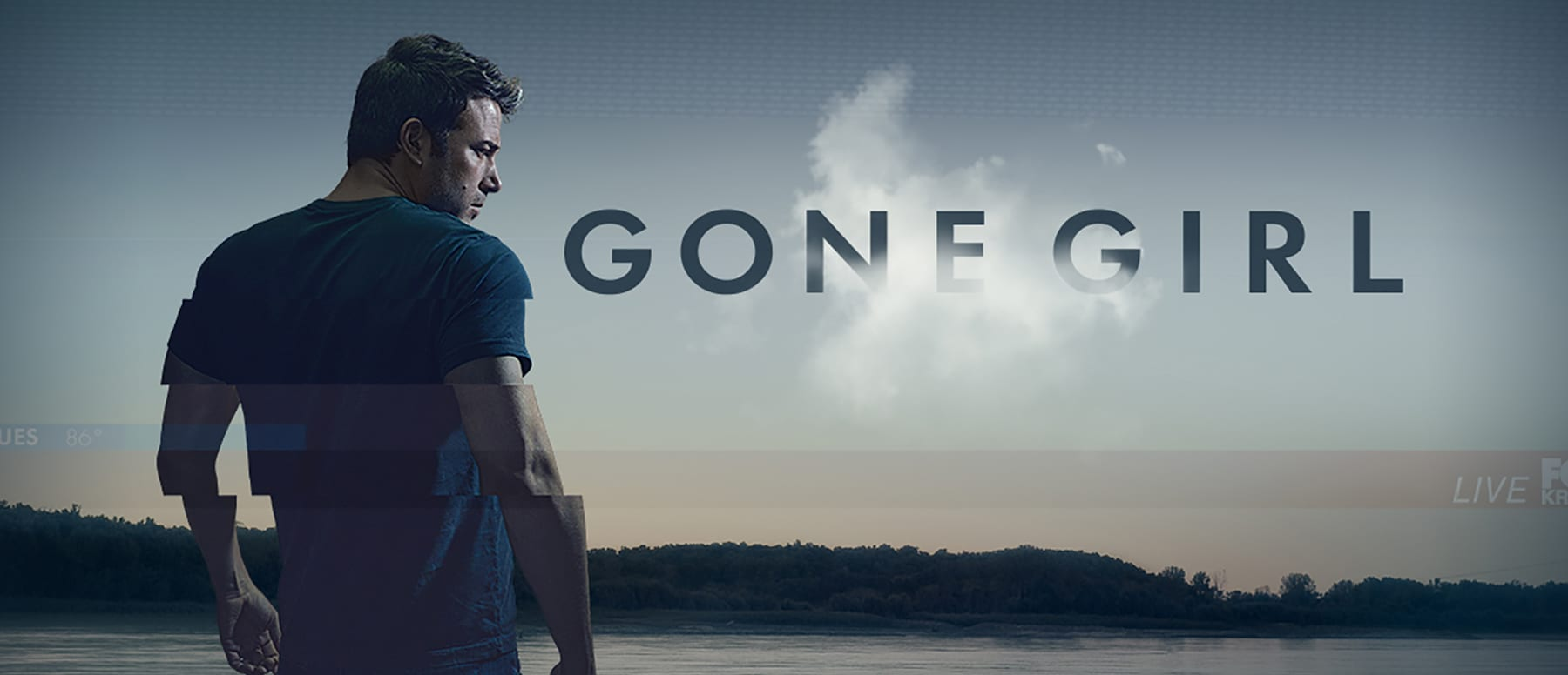 Gone Girl Hero