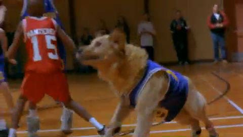Air Bud DVD Trailer