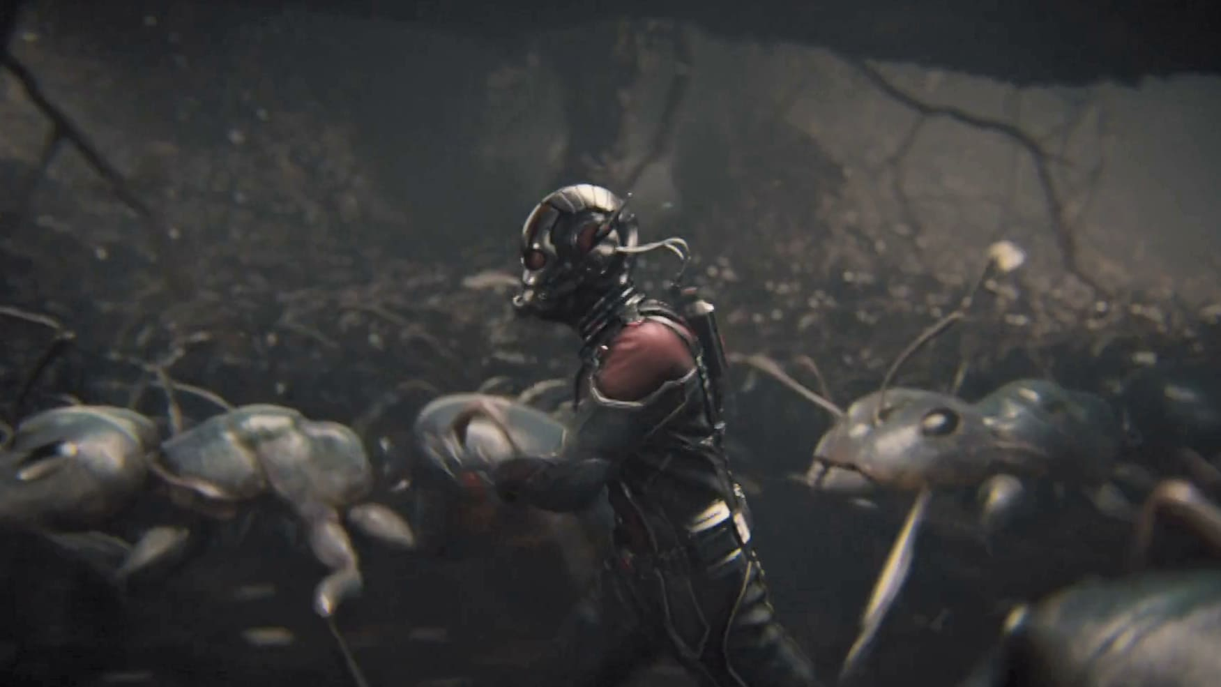 Training With The Ants | Ant-Man Film clip