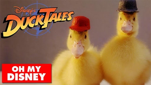 DuckTales With Real Ducks - Oh My Disney