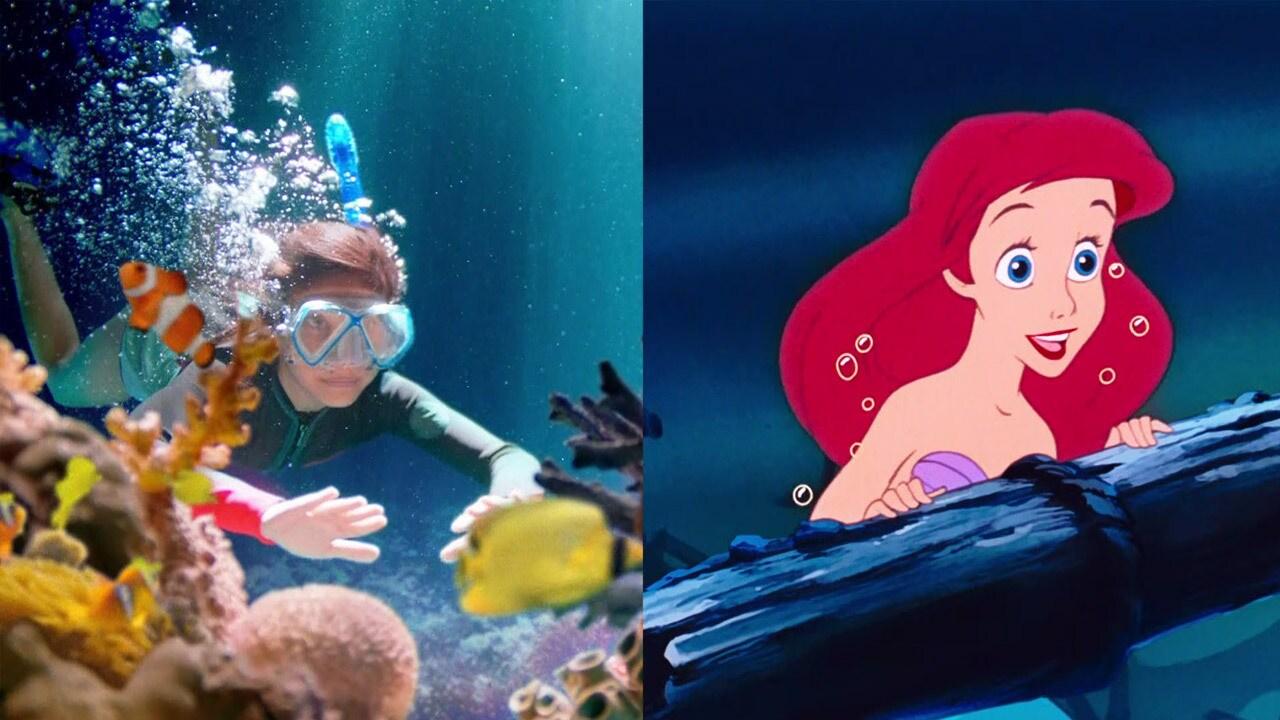Jdi za svým snem -jako Ariel
