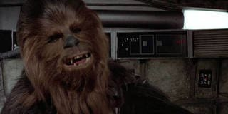 Let The Wookiee Win [ENG]