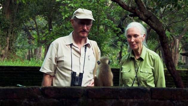 Dr. Jane Goodall and Dr. Wolfgang Dittus | Monkey Kingdom