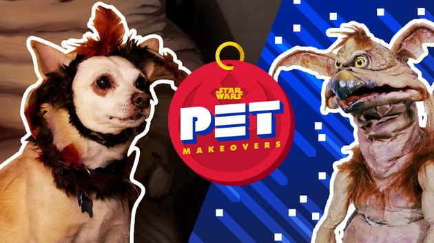 Salacious B. Crumb and Princess Leia | Star Wars Pet Makeovers by Oh My Disney