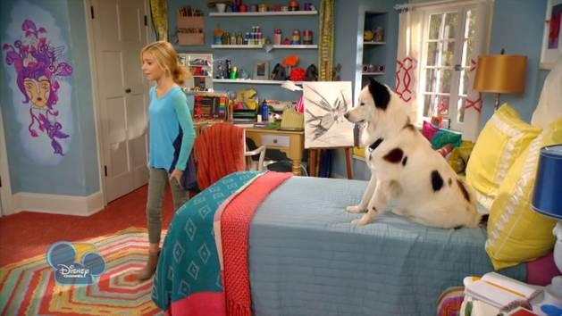 Stan Runs Away Dog With A Blog Disney Australia Video