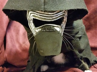 Fully Operational Fandom: Pets in Star Wars Costumes Are the Best