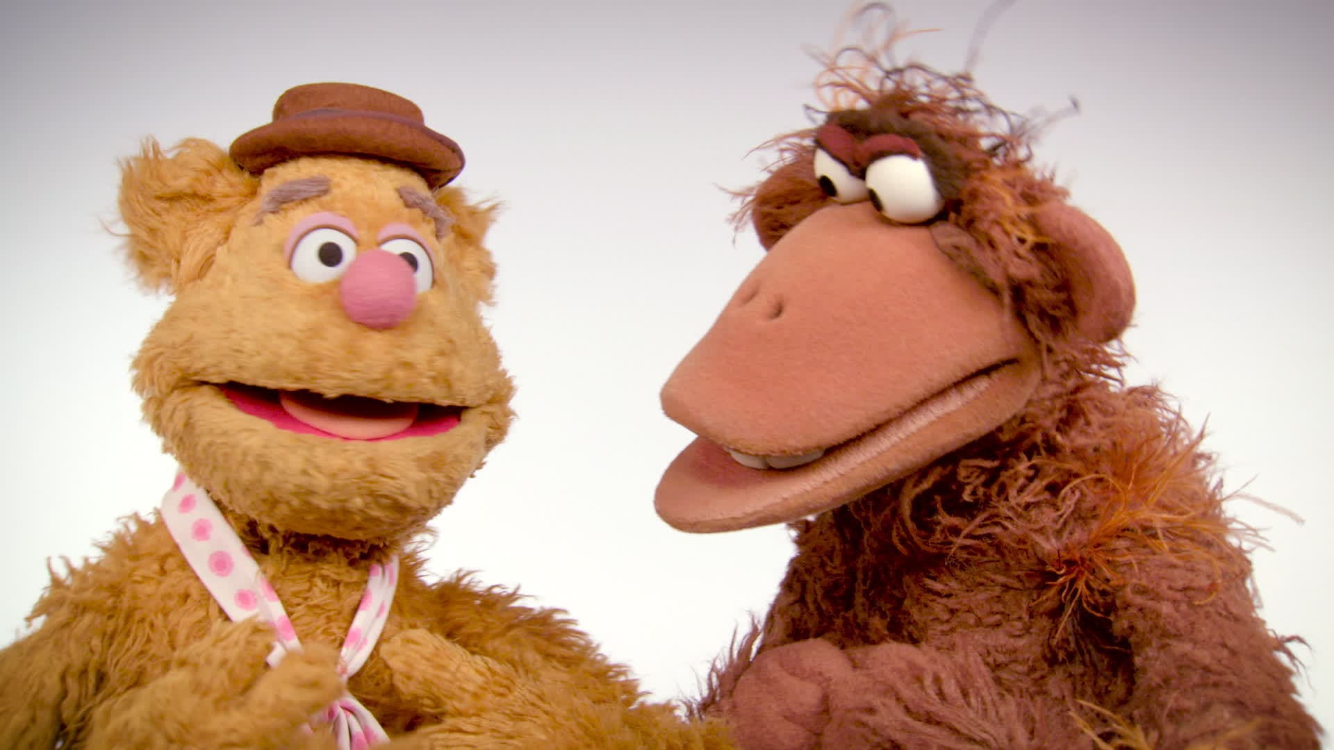Muppet Thought of the Week | Fozzie Bear