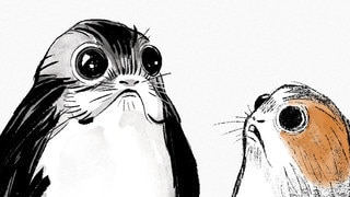 Introducing Porgs, the Cute New Creatures from Star Wars: The Last Jedi