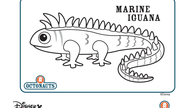 octonauts coloring pages all creatures - photo#31