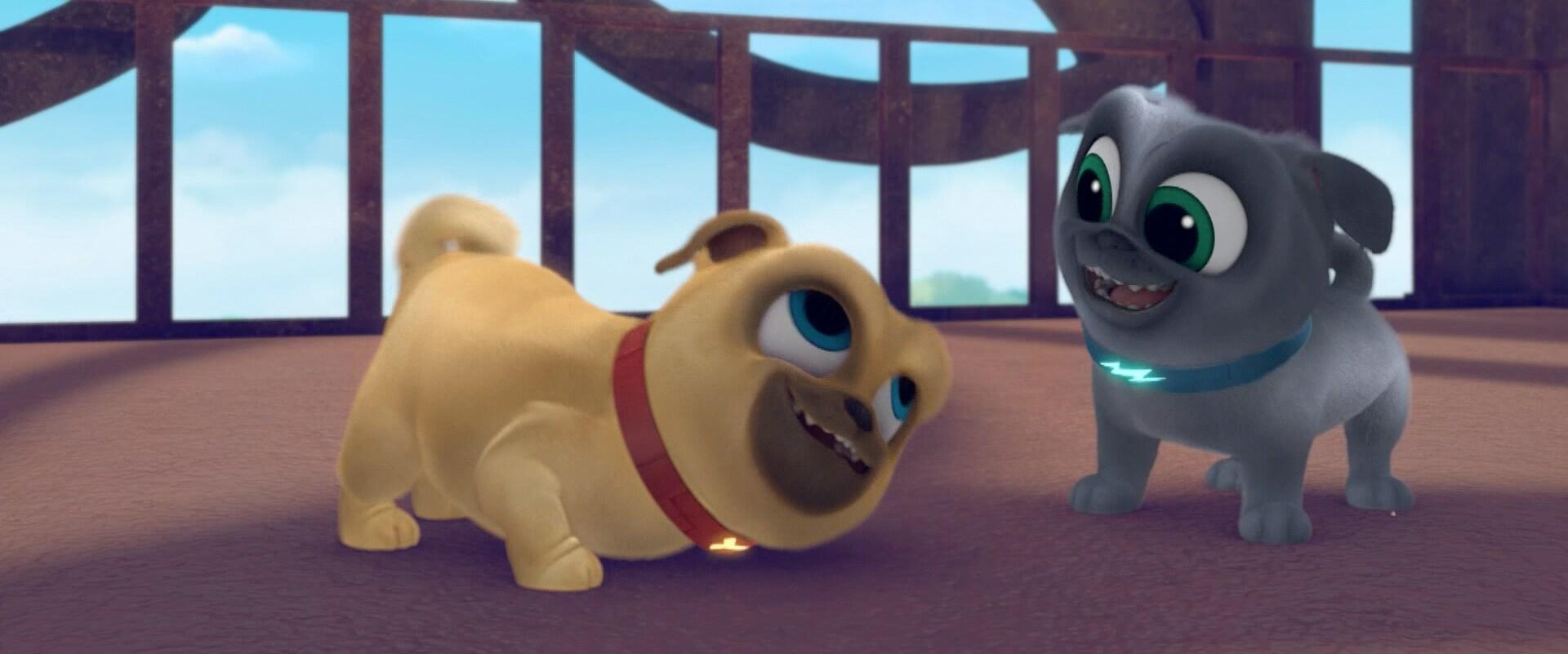 Dos cachorros traviesos - Puppy Dog Pals