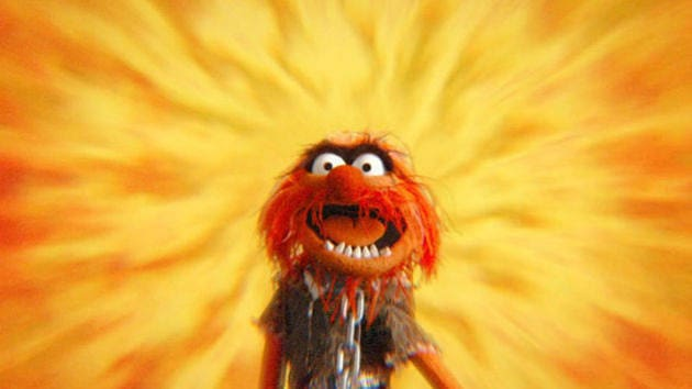 Can You Picture That? - Dr. Teeth and The Electric Mayhem