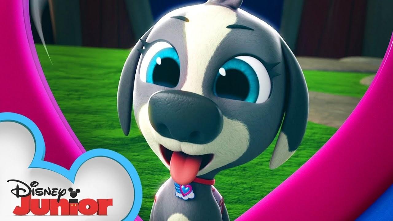 T.O.T.S. - Pablo the Puppy