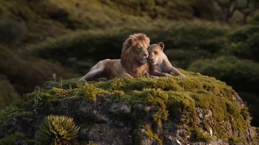 LE ROI LION – Un véritable sacre au Box-Office