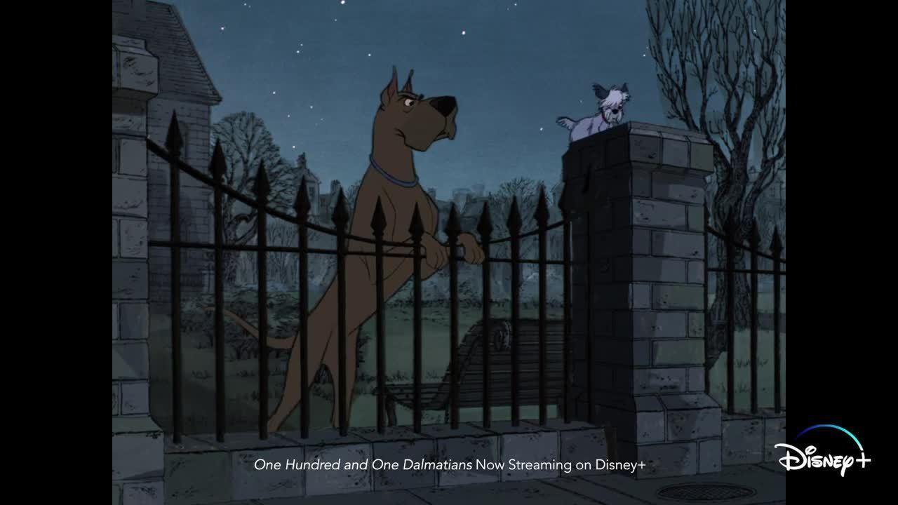 Twilight Bark Across Disney+