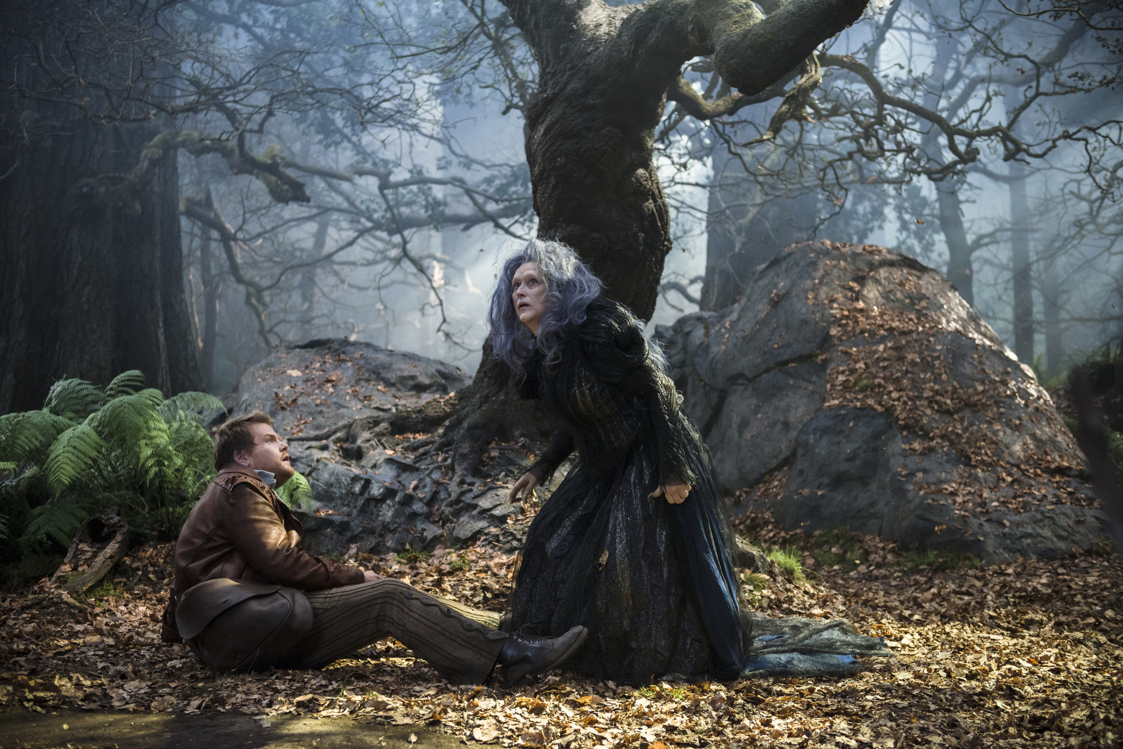 """James Corden and Meryl Streep star in """"Into the Woods"""""""