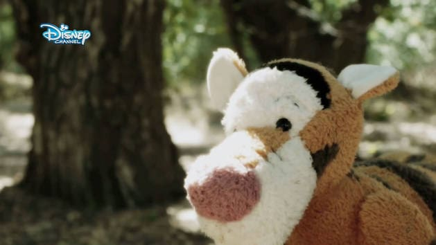 Winnie Puuh - Tigger tollt am tollsten