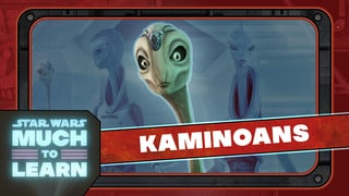 Kaminoans | Star Wars: Much to Learn
