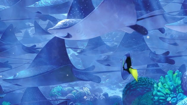 Finding Dory/Finding Nemo Quote Vid