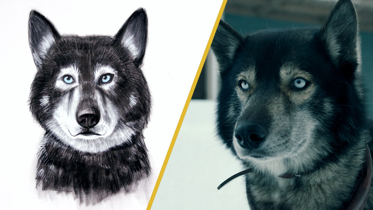 Charcoal Portrait of Togo | Disney DIY by Disney Family