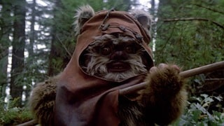 Leia Meets Wicket