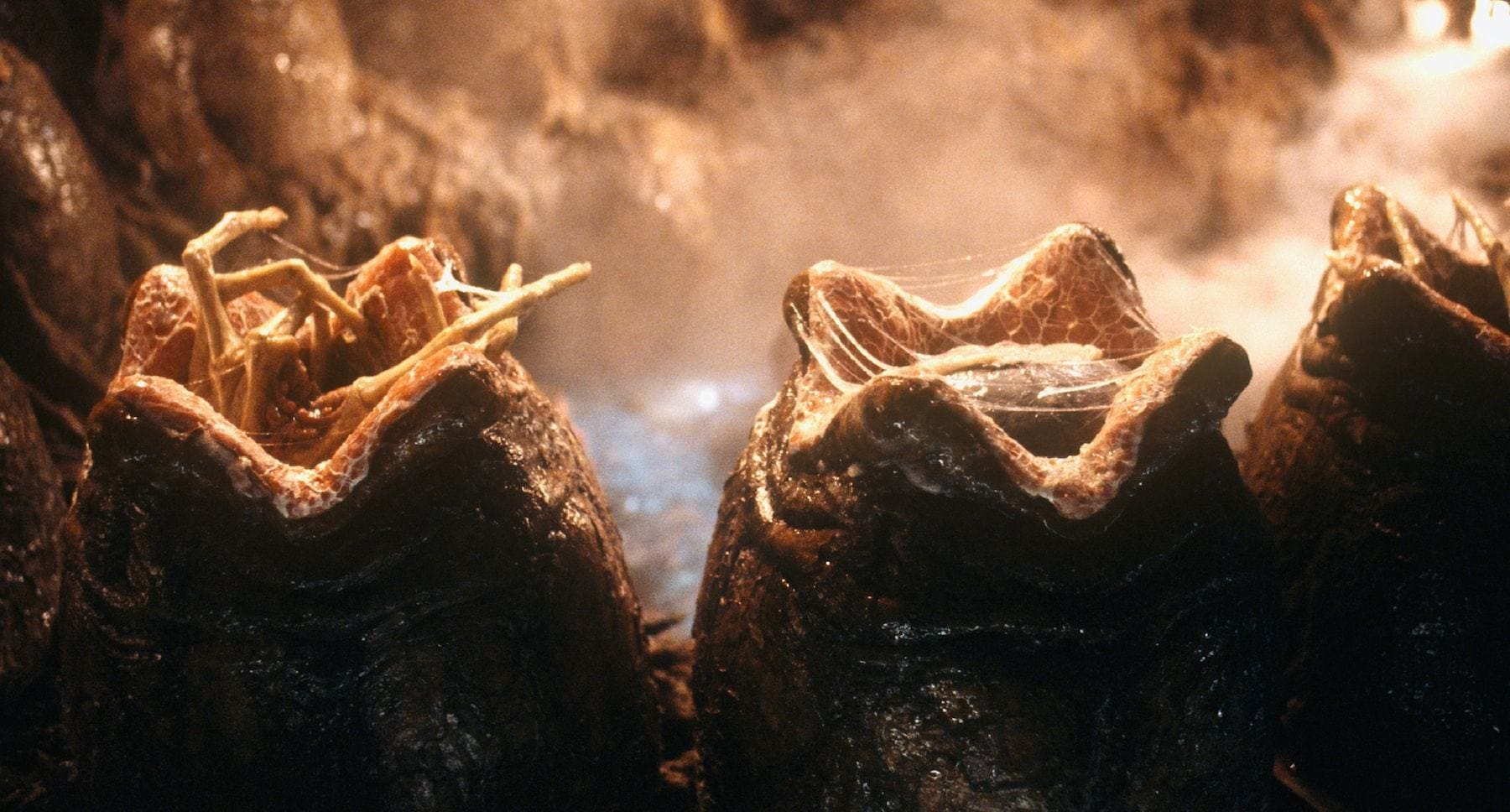 "Alien eggs hatching with face hugger aliens emerging in the film ""Alien: Resurrection"""