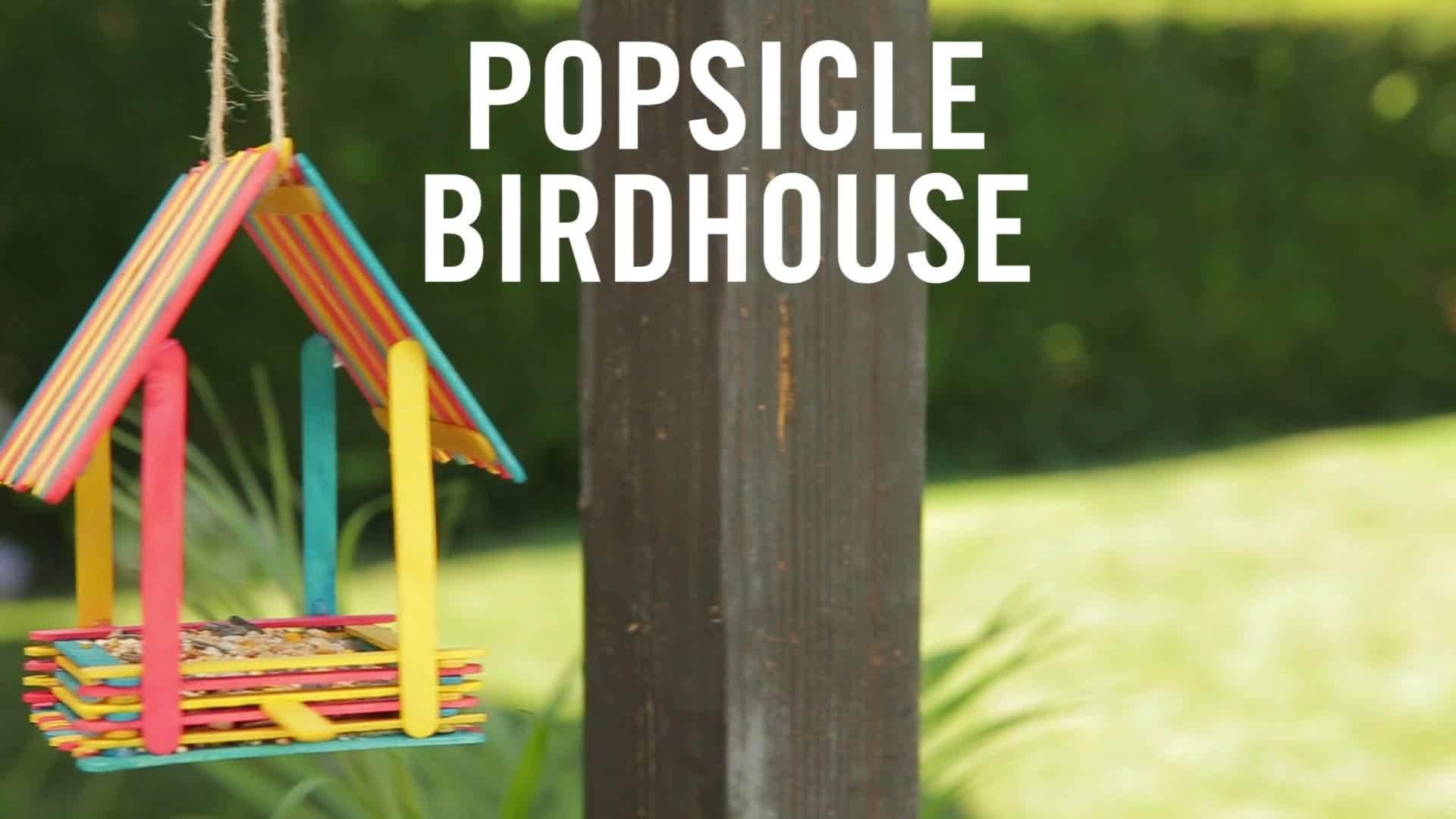 Popsicle Birdhouse | Babble DIY