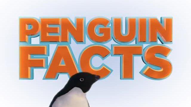 Disneynature Penguins | Penguin Facts
