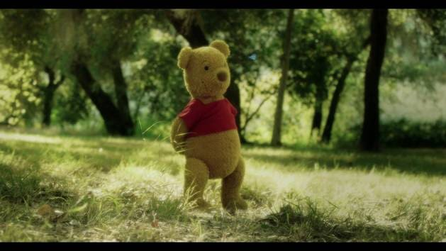 Winnie the pooh smackerel: Accidentes