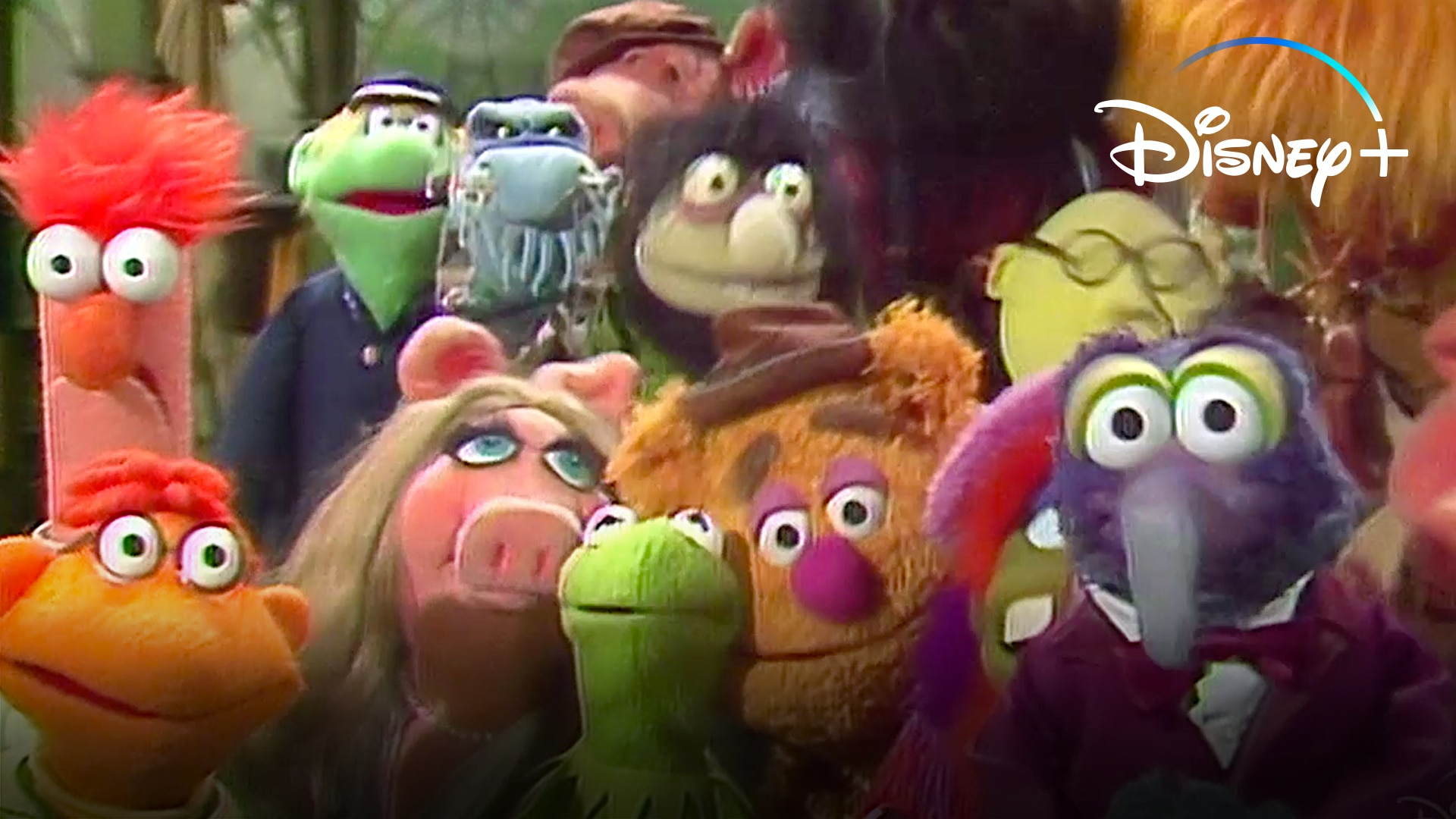 Showtime | The Muppet Show | Disney+