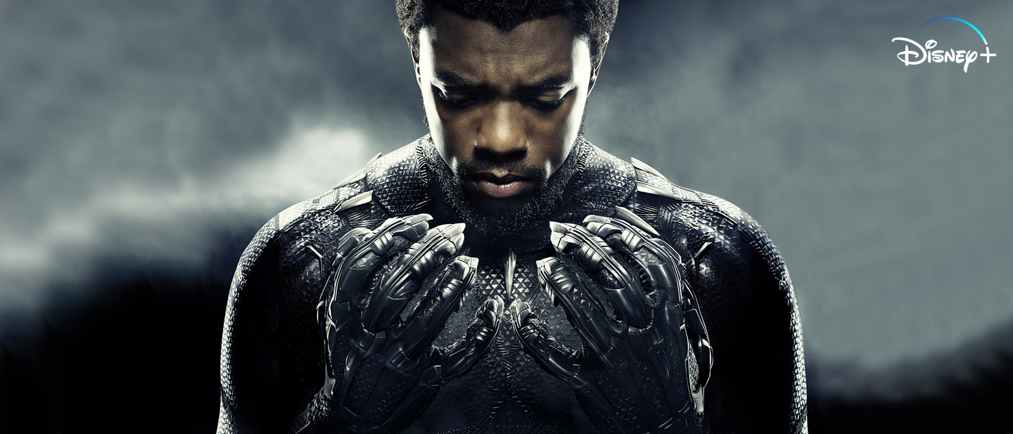 Black Panther Hero Streaming