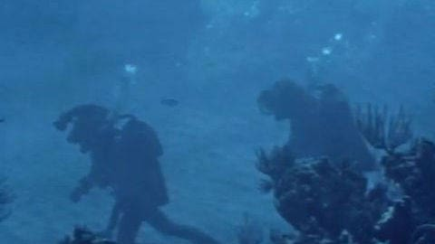 20,000 Leagues Under the Sea: Underwater
